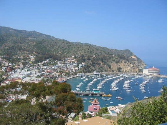 bigstock-Catalina-Island-1140153