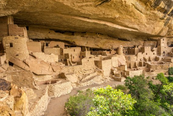 Cliff-Palace--Mesa-Verde-94719809