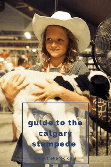 Guide to the Family-Friendly Calgary Stampede