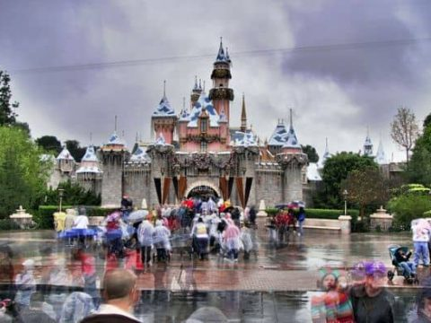 Rainy Day Fun at the Disneyland Resort