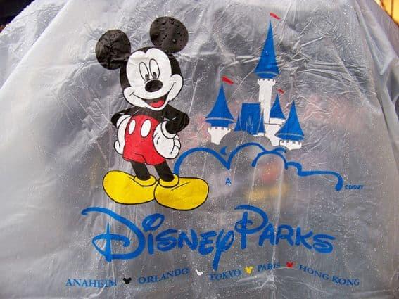 Disneyland poncho