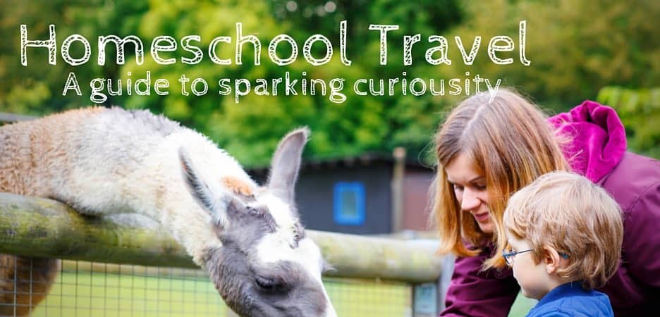 Homeschool Travel - inspiration, tips, and resources to help park curiosity through educational travel.
