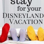 The 12 Best Hotels Near Disneyland for Families 1