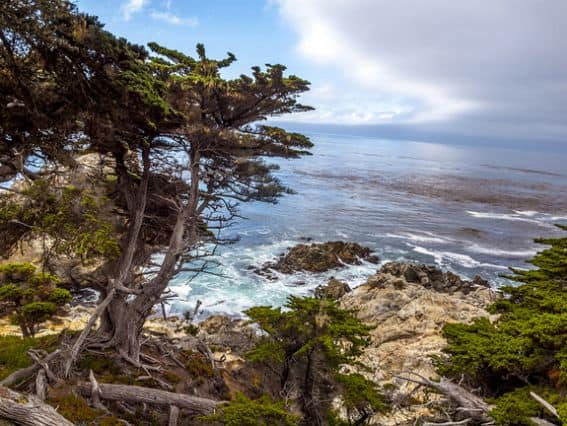 Outdoor adventures in Monterey County include these STUNNING ocean views. See where your family can HIKE & EXPLORE in Monterey County
