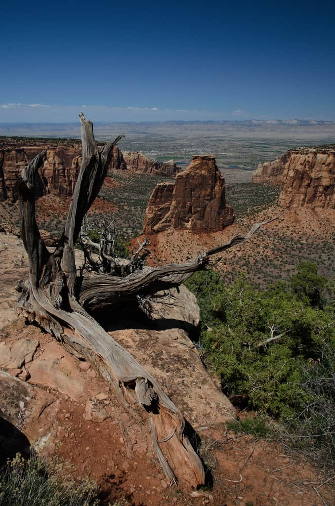 colorado national monument photo