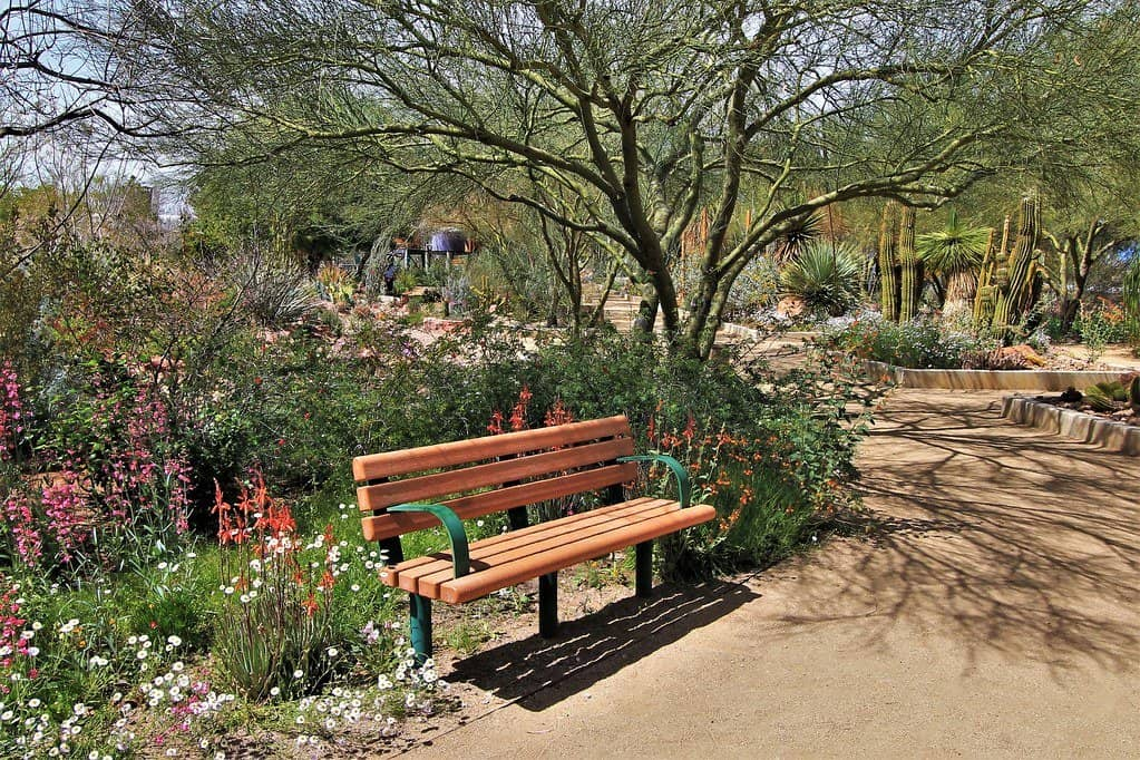 Las Vegas Springs Preserve photo