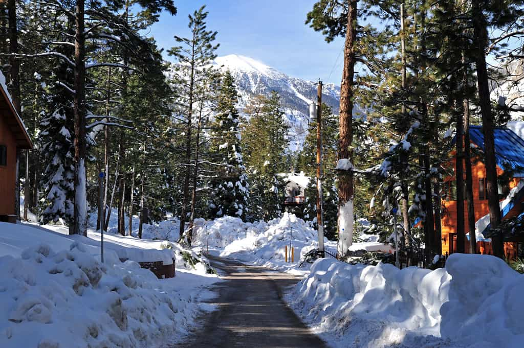 mount charleston snow photo