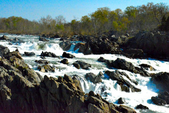 Day Trips from Washington DC: Visit the Great Falls Park of Virginia Falls Overlook