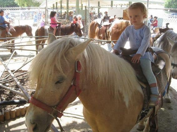 Griffith Park Pony Rides offer kids ages 1-13 the chance to ride horses of a variety of levels and speeds for just $3