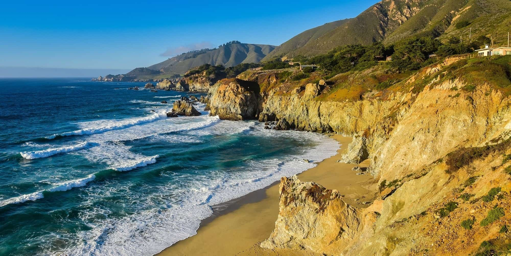 Discovering Monterey County's Wild Side