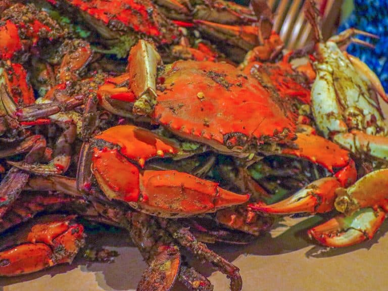 Eat Crab in Maryland with Kids