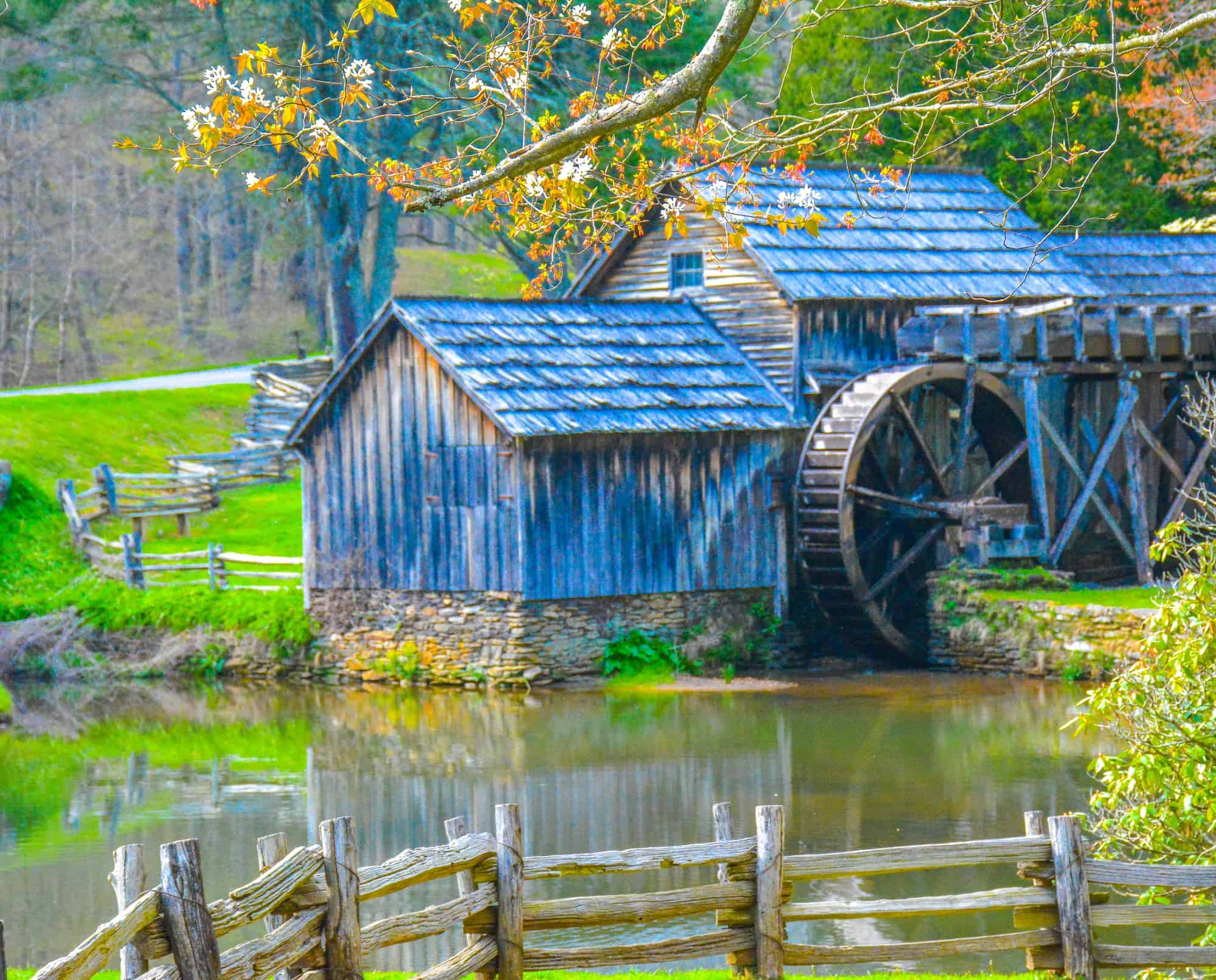 10 Fun Things to do in Virginia with Kids | Virginia Family Vacations
