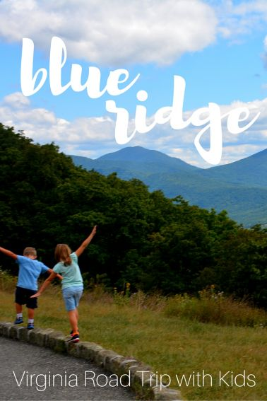 Virginia's Blue Ridge Parkway Roadtrip pin