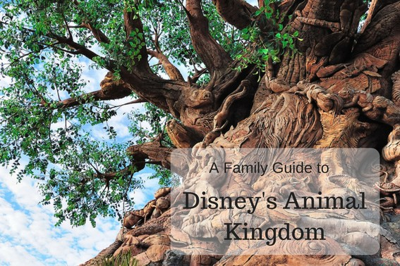 A Family Guide to Disney's Animal Kingdom