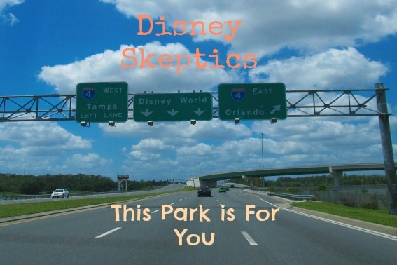 Disney Park for Young families