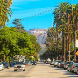 Hollywood & Celebrity-Themed Fun with Kids in Los Angeles