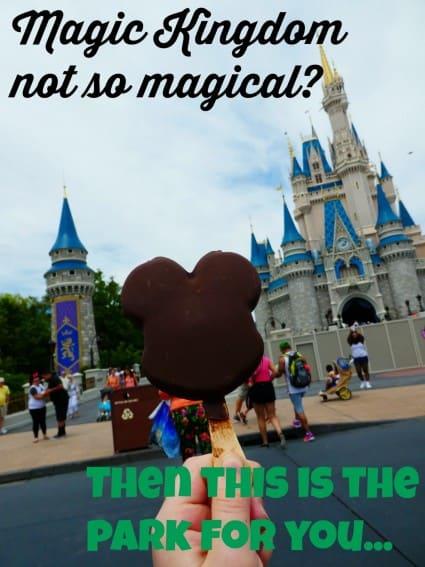 Mickey Premium Ice Cream Bar Magic Kingdom