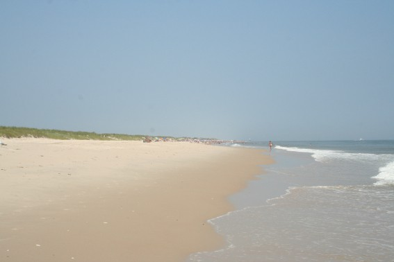 Beach view at Cape Henlopen in Delaware