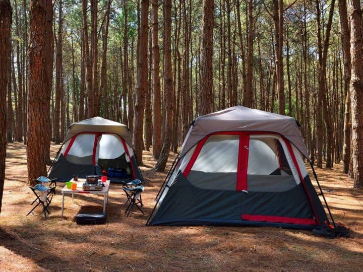 Top Family Camping Gear: What to Pack on Your Next Camping Trip