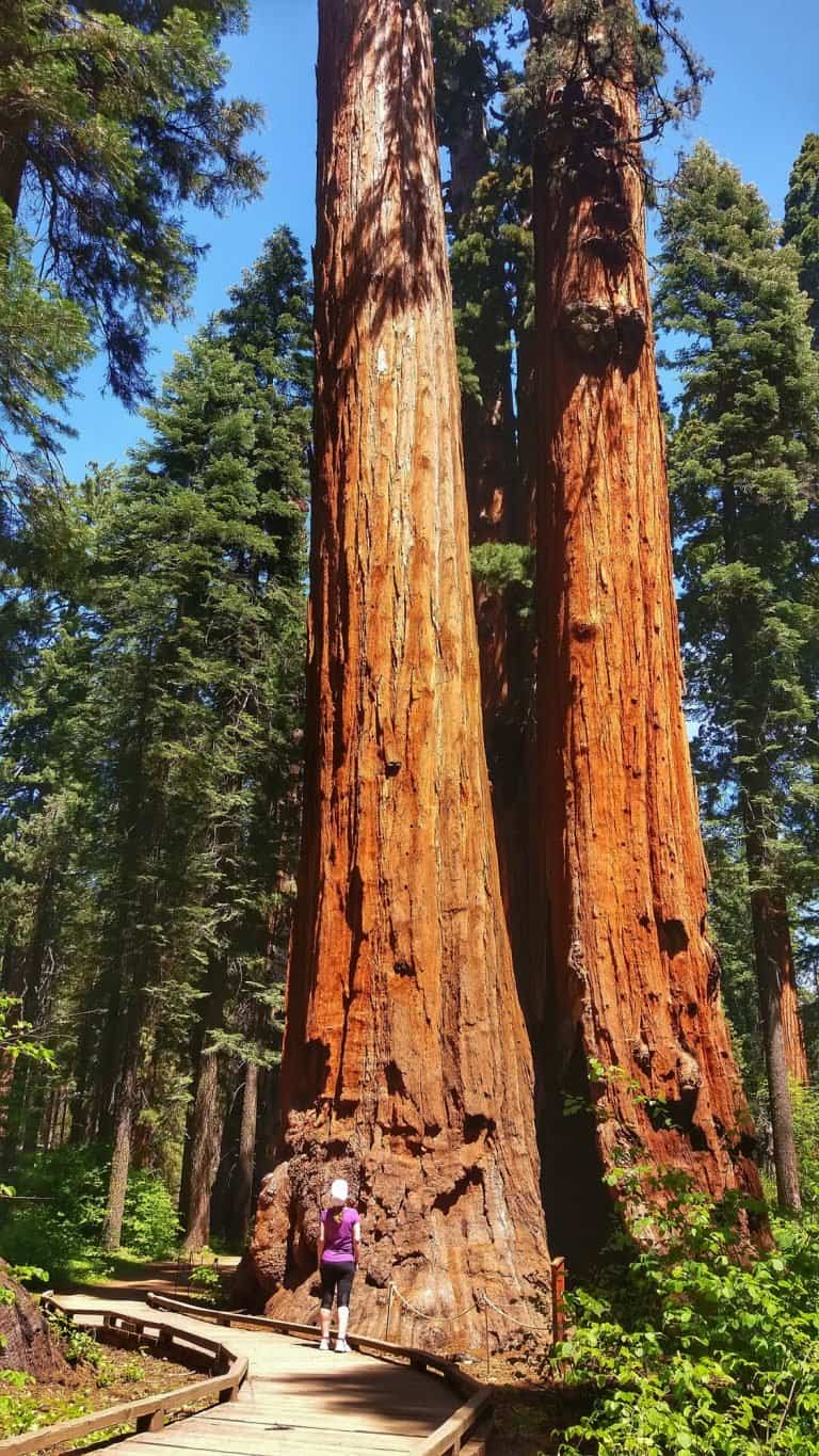 10 of The Best State Parks in the USA That Rival National Parks 1