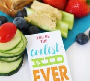 Healthy Lunch Ideas and lunchbox notes printables #RealFoodRocks @RubysRockets via @Skiptomyloublog
