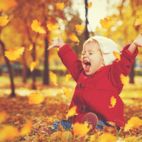 Fall Foliage with Kids