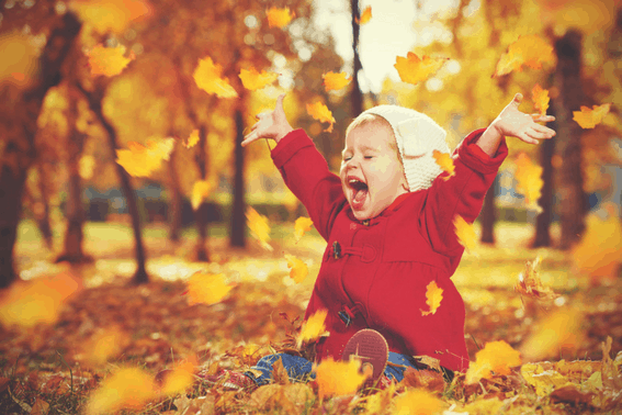 Explore the best places to see Fall Foliage with Kids across North America