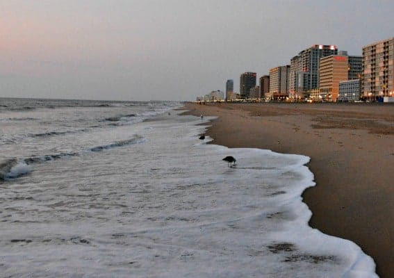 Oceanfront Hotels Virginia Beach Under