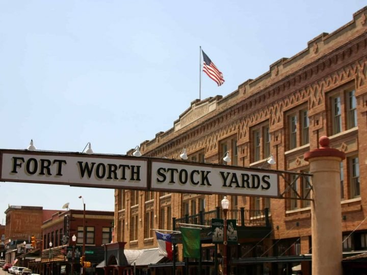Fort Worth: Two Days in Cowtown with Kids