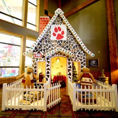 Great Wolf Lodge Christmas 2019: Snowland and Howl-o-ween 5