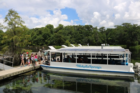 wakulla-springs-riverboat-tour-tallahassee-florida-trekaroo