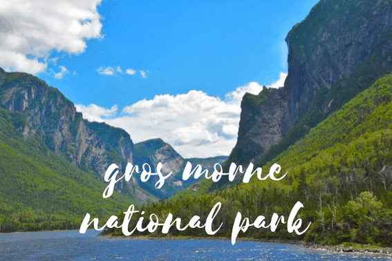 Exploring Western Newfoundland's Gros Morne National Park with Kids