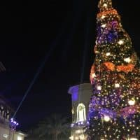 Disney World Resort Holidays