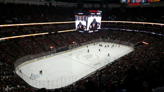 Where to sit an an NHL hockey game