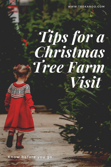 https://blog.trekaroo.com/know-go-tips-visiting-christmas-tree-farm/