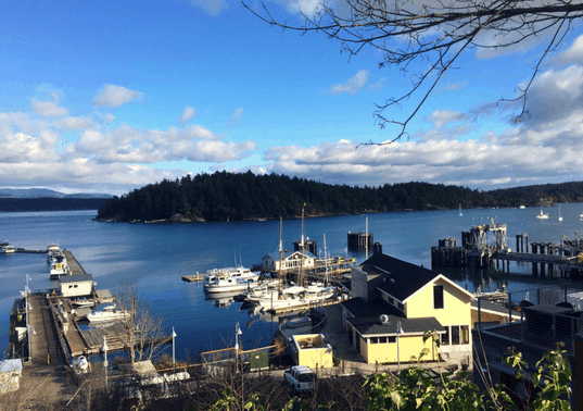 San Juan Island Vacations: Off Season Fun for Families in Washington