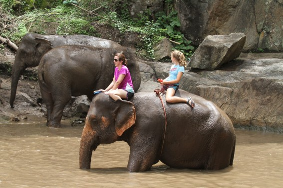 Family-friendly trip to Patara Elephant Farm in Chiang Mai, Thailand