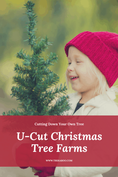 U-cut Christmas Tree Farms Pin