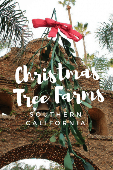choose and cut christmas tree farms in southern california