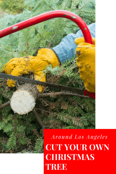 christmas tree farms los angeles and surrounding areas