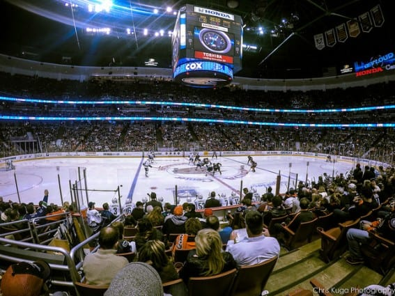 ducks game: take your family to a hockey game