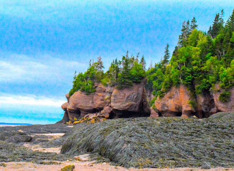 Places to Visit in Eastern Canada Hopewell Rocks