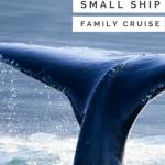 Uncruise Alaska- The Ultimate Small Ship Alaska Cruise with Kids 1