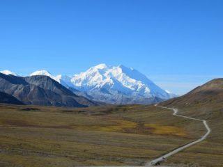 Denali National Park Epic Alaska Cruise Adventure with Kids