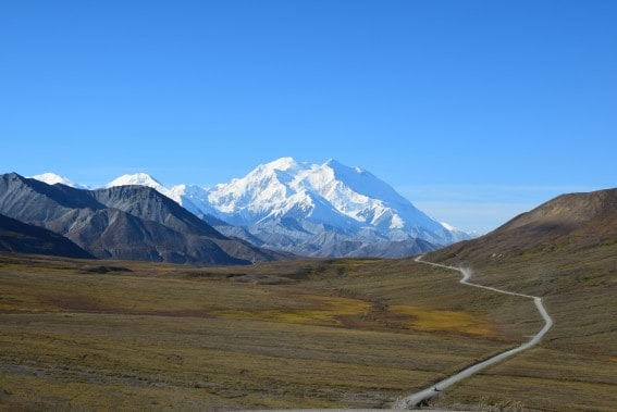 Denali National Park Epic Alaska Cruise Adventure with Kids