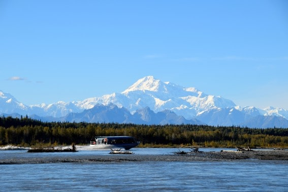 Jetboat tours during an Alaska Cruise are very popular along the three rivers of the Talkeetna region
