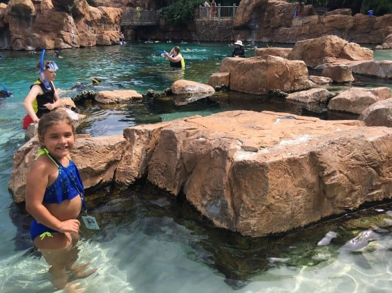 Top 10 Fun Things to do in Orlando with Kids 3