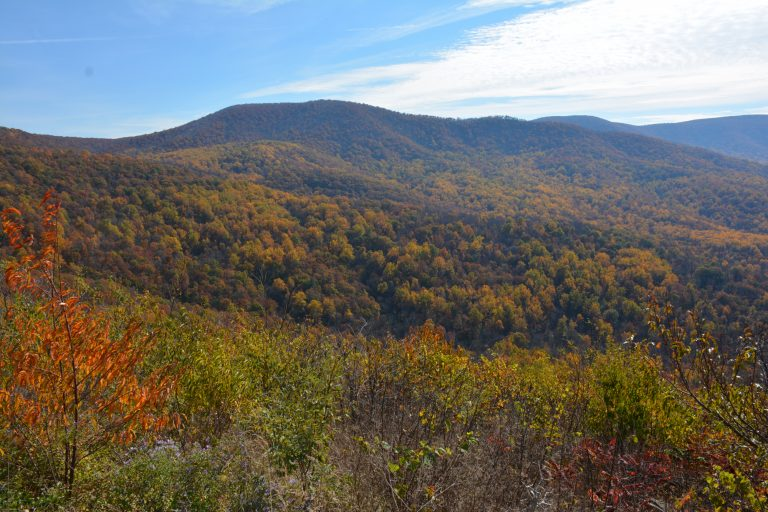 Fun Things to Do in Virginia go Hiking in Shenandoah National Park