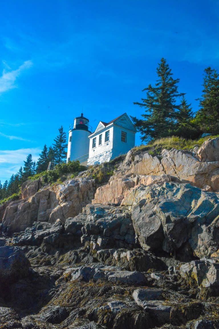Best Things to Do in Acadia National Park with Kids 10