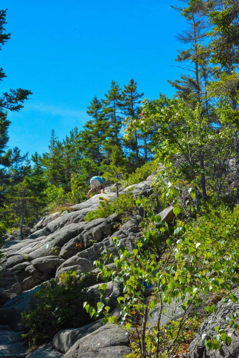 Best Things to Do in Acadia National Park with Kids 13